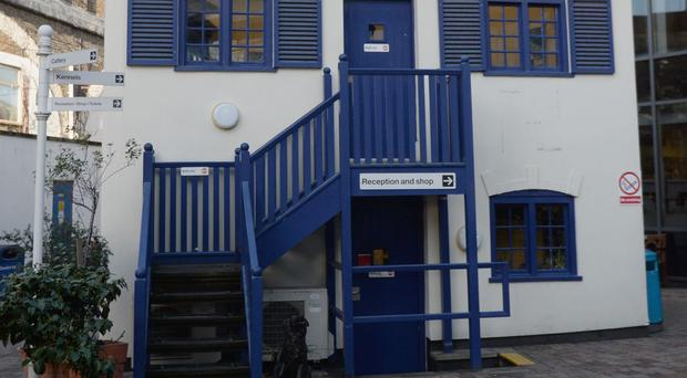 Battersea Dogs & Cats Home is among the patronages the Queen will be giving up
