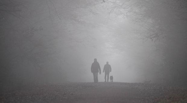 Dog walkers make their way through the heavy fog in Epping Forest, Essex.