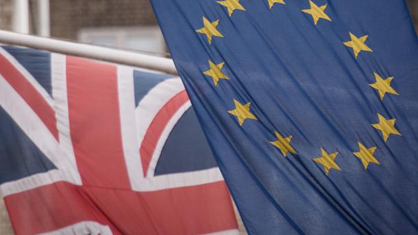 The European Commission warned that the impact of the vote to leave the EU