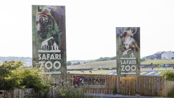 The zoo was fined after one of its employees was killed by a Sumatran tiger in May 2013