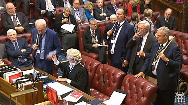 Peers defied Theresa May, voting by 358 to 256 in favour of an opposition amendment guaranteeing the rights of EU nationals living in the UK after Brexit