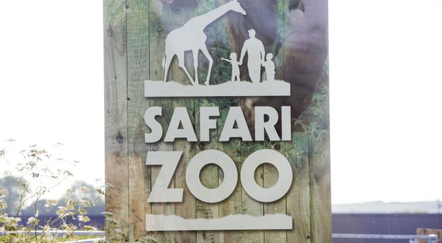 South Lakes Safari Zoo in Cumbria