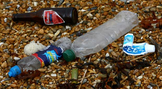 Single-use drinks bottles form the most common type of plastic packaging found washed up on shorelines globally, Greenpeace said