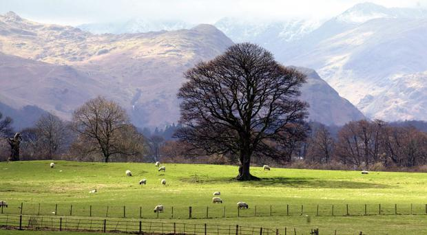 Almost 10 million people in the UK live in areas of England defined as rural