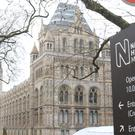 Attractions across London such as the Natural History Museum saw an overall increase of just 0.1%