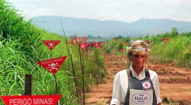Diana, Princess of Wales, sparked a major international row after saying that the sale of all landmines should be stopped