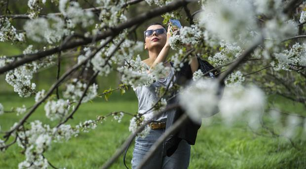 Sunseekers can start slipping on the shades on Friday, with clear skies prevailing over much of the UK, the Met Office said
