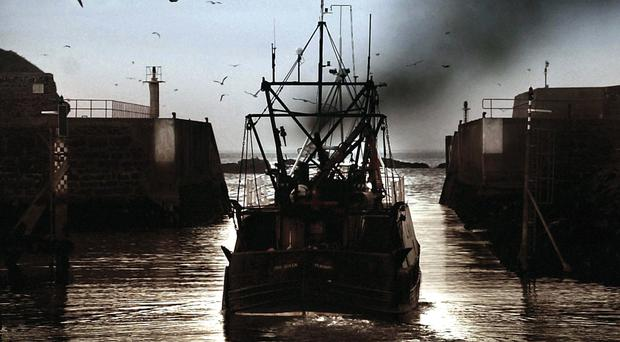 The IEA said the decline of the fishing industry 'has largely been down to the failure of the EU's Common Fisheries Policy'