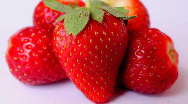 Strawberries appeared to slow down the growth of breast cancer tumours in mice, scientists said