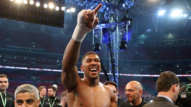 Anthony Joshua celebrates victory over Wladimir Klitschko (Nick Potts/PA)
