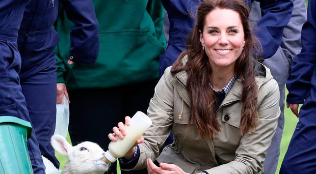 Catherine, Duchess of Cambridge, feeds a lamb as she visits author Michael Morpurgo's Farms for City Children