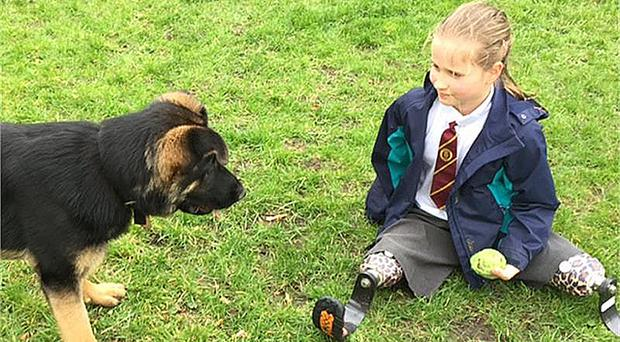 Marina, 8, from Devon, with trainee police dog Tag, who is eight months old (Devon and Cornwall Police/PA)