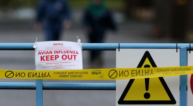A sign warning of an avian influenza outbreak
