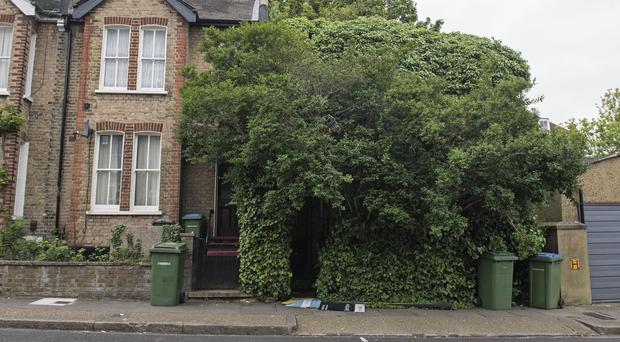 A house up for auction that is completely obscured by trees, in Ruthin Road, Blackheath, London (Victoria Jones/PA)