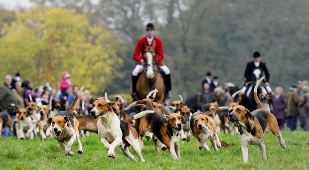 Fox hunting was banned in the United Kingdom in 2004 (John Giles/PA)