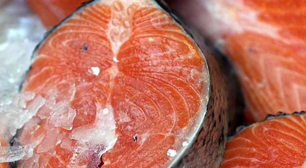 'The Atlantic salmon is extinct or in critical condition in about one-third of the rivers in its range and is endangered or vulnerable in a further third' (stock photo)