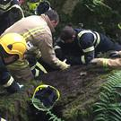 Fire crews rescue a trapped calf (West Yorkshire Fire Service/PA)