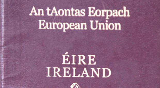 The number of Irish passports issued in Britain is set to almost double this year compared with the last full year before the EU referendum, Ireland's ambassador to the UK has said