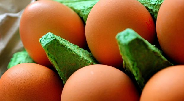 Some eggs have been subject to contamination (PA)