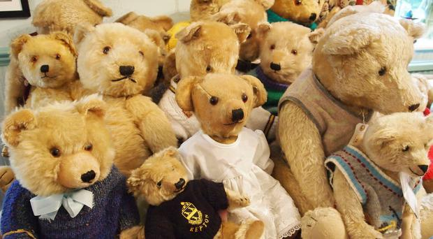 Some of the 35 bears owned by Jill Barker which she has collected over nearly half a century and are going under the hammer (Hansons Auctioneers/PA)