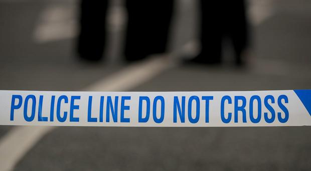A mother and daughter were stabbed to death in Golders Green, London (PA)