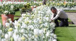 A gardener undertakes some weeding in the White Garden at Kensington Palace (Jonathan Brady/PA)