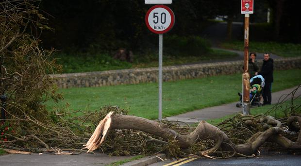 Fallen tree branches on Watermill Road in Raheny, Dublin (Caroline Quinn/PA)
