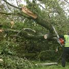 Storm Ophelia toppled trees and caused widespread damage which left thousands of homes without power (Niall Carson/PA)
