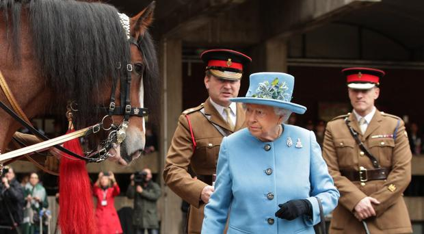 The Queen names the army's most senior animal - Drum Horse Perseus (Yui Mok/PA)