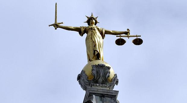 'In this case the perpetrator pleaded guilty, saving her from giving evidence, but her determination to see the case through and to tell her story may encourage other women who have undergone similar ordeals to come forward and tell police what happened' (stock photo)
