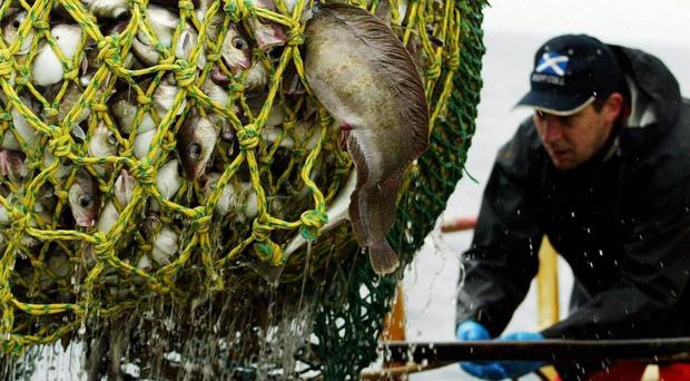 Talks on the latest fishing quotas are set to take place (Maurice McDonald/PA)