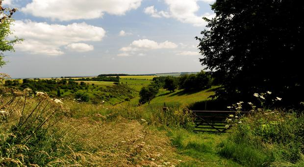 A view of the countryside (Anna Gowthorpe/PA)