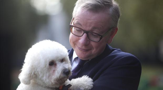 Michael Gove said the Government will ensure that there is no gap in the operation of the law (PA)