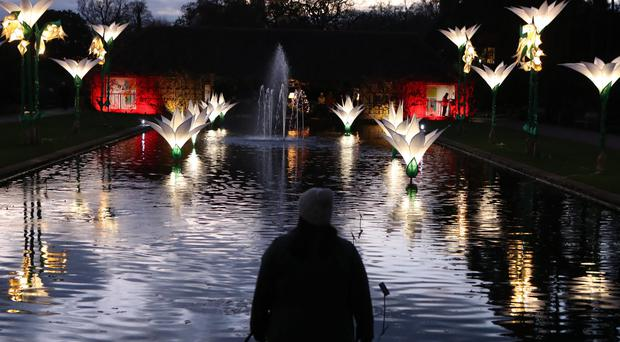 The Christmas Glow lights at RHS Garden Wisley near Woking (Steve Parsons/PA)