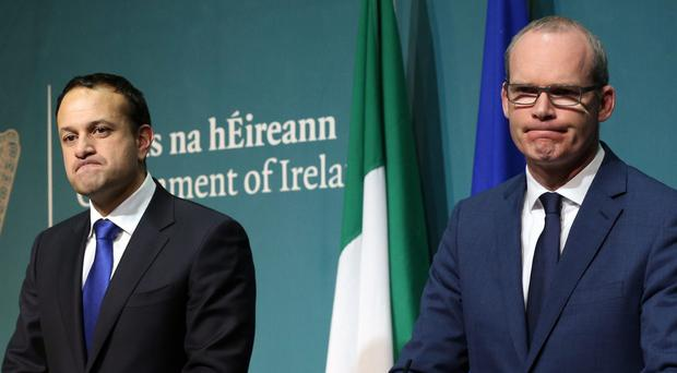 Taoiseach Leo Varadkar (left) and Tanaiste Simon Coveney during a press conference at Government Buildings in Dublin (Laura Hutton/PA)