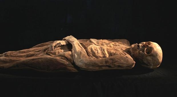 The mummy is that of Anna Catharina Bischoff, scientists said (SRF/PA)