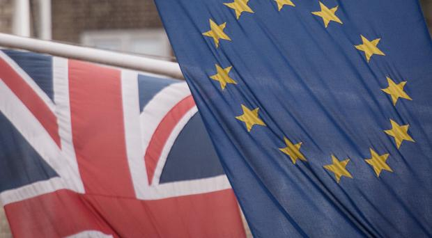 The Conservative Party has had a tumultuous relationship with Europe (Stefan Rousseau/PA)