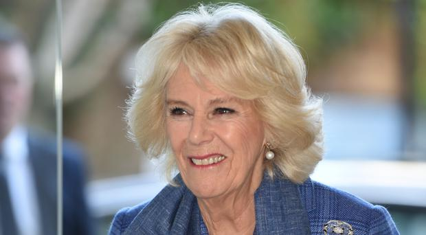 Camilla joked she could hear 'pencils sharpening' (Eddie Mulholland/Daily Telegraph/PA)