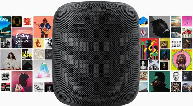 The £319 speaker is seen as a high-end alternative to Amazon and Google's popular devices (Apple)