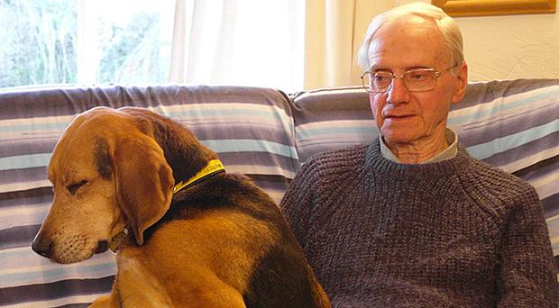 Alexander Palmer allegedly attacked 83-year-old dog walker Peter Wrighton in August last year (Norfolk Police/PA)