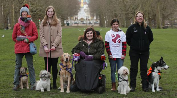 (left to right) Vanessa Holbrow, 47, from Burnham-on-Sea in Somerset, with her Border Terrier Sir Jack Spratticus; Hannah Gates, 19, from Hazlemere in Buckinghamshire, with her Shih Tzu Buttons; Clare Syvertsen, 29, from Notholt in London, with her Labrador/Golden Retriever cross Griffin; Sarah Mohammadi, 14, from Hayes in west London, with her Cocker Spaniel/Poodle cross Waffle, and Gayle Wilde, 39, from Kilsyth in Lanarkshire, with her Border Collie Taz (Yui Mok/PA)