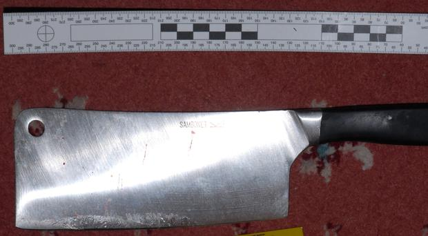The cleaver used by Fred Butcher in the attack. Picture: Kent Police