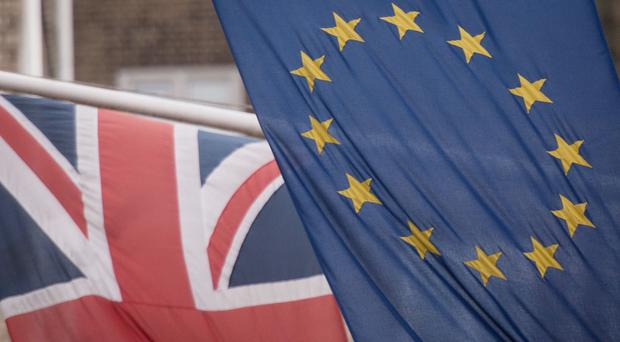 A co-founder of Leave.EU said Cambridge Analytica did not play any role in its Brexit campaign. (Stefan Rousseau/PA)