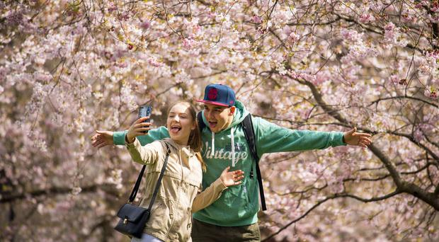People take a selfie under the blossom trees in St James Park, London (Dominic Lipinski/PA)