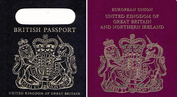De La Rue has ditched its appeal against the Government's controversial decision to choose a Franco-Dutch company to make post-Brexit passports (PA)