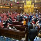 Peers backed the amendment to the European Union (Withdrawal) Bill (Parliament TV)