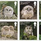 A set of ten stamps featuring five species of owls (Royal Mail/PA)