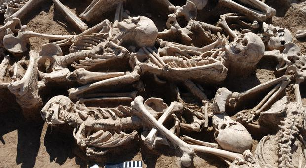 Battle victims from a Xiongu period mass burial site in Omnogobi, Mongolia. Scientists took DNA from the skeletons to search for evidence of the Hepatitis B virus (Alexey A Kovalev/PA)
