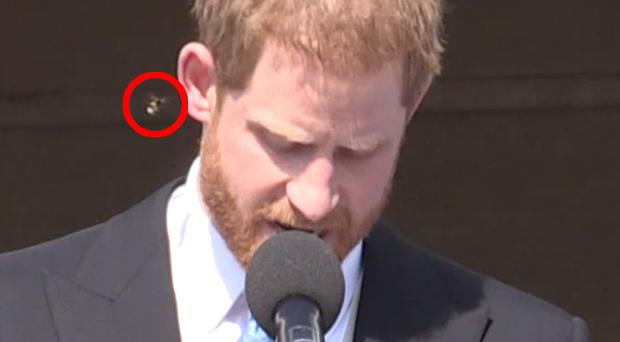 The Duke of Sussex was approached by a bee during his speech at a Buckingham Palace garden party (PA Video)