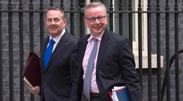 Liam Fox (left) said that the group including Michael Gove (right) had been waiting for a report to be finished before meeting a second time (Stefan Rousseau/PA)